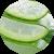Aloe Vera - Aloe Barbadensis