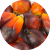 Palm Oil - Elaeis Guineensis